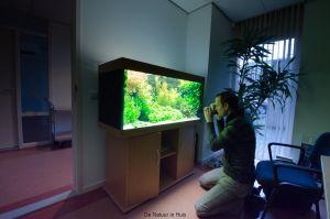 hk2011_jaap-13